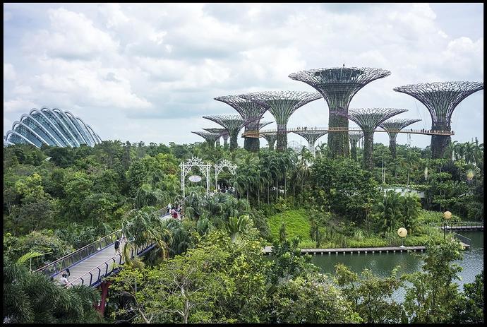 Singapore_gardens_by_John